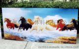 鄭州卓越立體板材畫4D全景畫