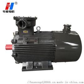 山东盛华电机YBVP-80M 4极变频防爆电动机