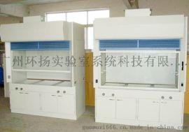 广州环扬全钢通风柜 实验室家具设备厂家 实验室规划
