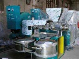直销花生油榨油机 全自动螺旋花生榨油机 菜籽榨油机
