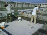 南京专业承接彩钢厂房防水.屋面阳光房地下室防水等工程 质保10年