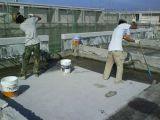南京專業承接彩鋼廠房防水.屋面陽光房地下室防水等工程 質保10年