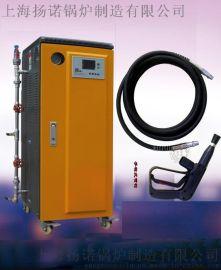 油污清洗灭菌用中型电蒸汽清洗机 蒸汽清洗机