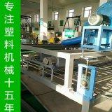 三維土工網擠出生產線  三維植被網廠家