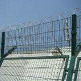 监狱护栏网 振鼎 厂家直销 Y型安全防御护网
