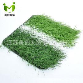 双簇ws草丝,50草高足球草,足球场运动草坪