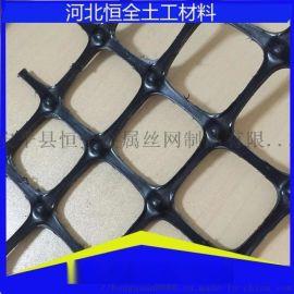 厂家**塑料养殖格栅 玉米围栏防护网 农用塑料网 路基土工格栅