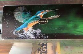 花蝴蝶彩绘打印铝单板 动物UV打印彩绘铝单板