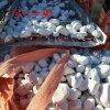 白色卵石多少钱一吨 河北石家庄白色卵石价格