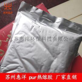 惠洋供应pur热熔胶价格
