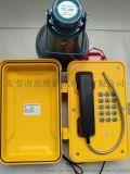 防爆扩音电话站 矿用防爆扩音电话 防爆扩音对讲系统