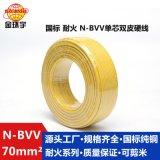 金環宇電線電纜耐火N-BVV 70平方銅線雙塑銅芯主線國標家裝電線