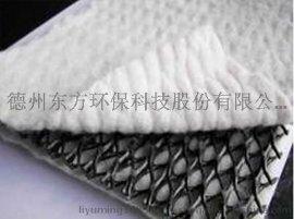 高強抗拉 抗壓 HDPE三維複合排水網 排水網芯