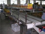 膨化食品网带输送机,乳制品网带输送机,网带输送机