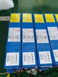 进口电芯滑板车电池组