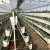 设施草莓立体栽培  汉明专注生产PVC草莓槽