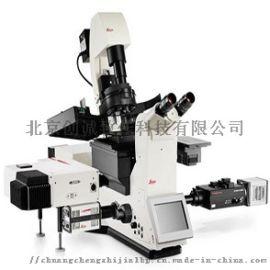 Leica DMi8 S倒置顯微鏡