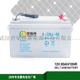 SOMUCH12V65ah胶体蓄电池太阳能蓄电池