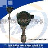 YHS-2油混水监测装置
