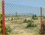 厂家供应养殖隔离网护栏网土鸡养殖网