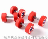 健身房私人工作室减肥训练哑铃