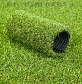 仿真人造草坪幼儿园 人工草坪塑料草工程围挡草