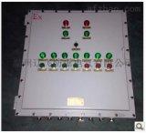 双开门防爆照明动力配电箱/钢板焊接防爆配电柜