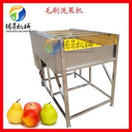 毛刷喷淋洗果机 罗汉果高压喷淋清洗机 江西橙清洗机