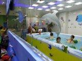 河北金色太阳泳池婴幼儿游泳馆设备游泳池