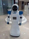 餐饮送餐点餐机器人租赁 山东卡特