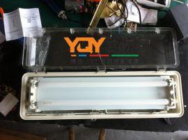 BAY51-Q防爆防腐全塑荧光灯,BAY51-Q18x2,BAY51-Q36x2