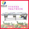 不锈钢输送带工作挑选台 果蔬人工分拣台