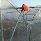 厂家直销热镀锌大棚钢管厂 花卉温室大棚 农用蔬菜大棚钢管