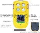 青岛路博LB-FQ便携式多气  测 仪