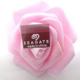 Seagate透明胶章标 服装胶章LOGO