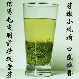 綠茶 信陽毛尖 明前茶 信陽茶葉廠家