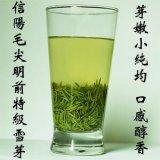 绿茶 信阳毛尖 明前茶 信阳茶叶厂家