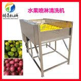 广西不锈钢清洗机 果蔬毛刷喷淋清洗机