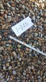 廊坊道路施工用鹅卵石   河卵石便宜供应