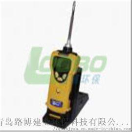 PGM-1600泵吸式可燃气检测仪-路博