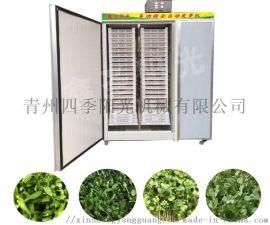 芽苗菜种子催芽机,全自动种子催芽机,芽苗菜催芽机