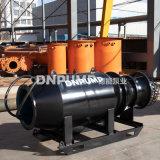 排灌泵站潜水贯流泵生产商双向