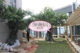 郑州枫林园艺仿真树假树仿真树厂家