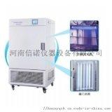 河南药品稳定性试验箱,综合药品稳定性试验箱厂家