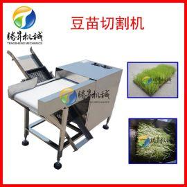 婉豆苗切割设备 可拼接输送带式流水线 豆苗切割机