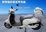 甲殼蟲電動車