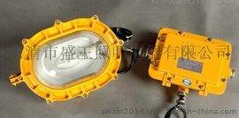 海洋王BFC8120强光防爆灯