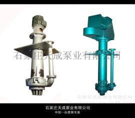 150ZJL液下渣浆泵 石家庄天成泵业产