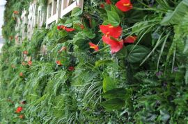 仿真植物墙、绿植墙、景观绿化