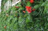 仿真植物牆、綠植牆、景觀綠化